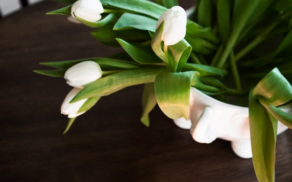 Ge liv åt tulpanerna i en skål...