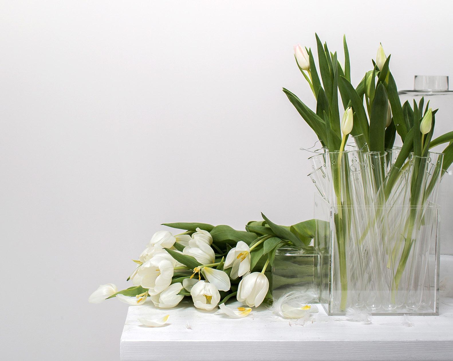 Veckans stilleben - Tulpanens dag detalj