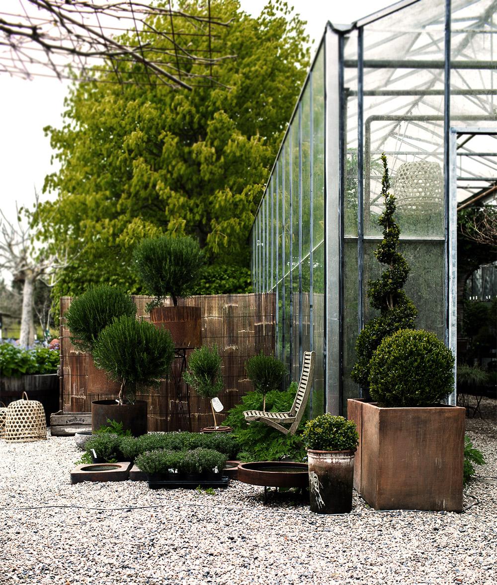 Daniella´s trädgård | Bästa plantskolan 2